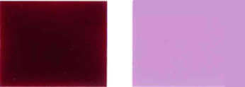Pigment-gewelddadige-19-kleur